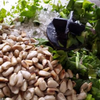 Pesto Zubereitung