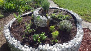 Kräuterspirale bepflanz