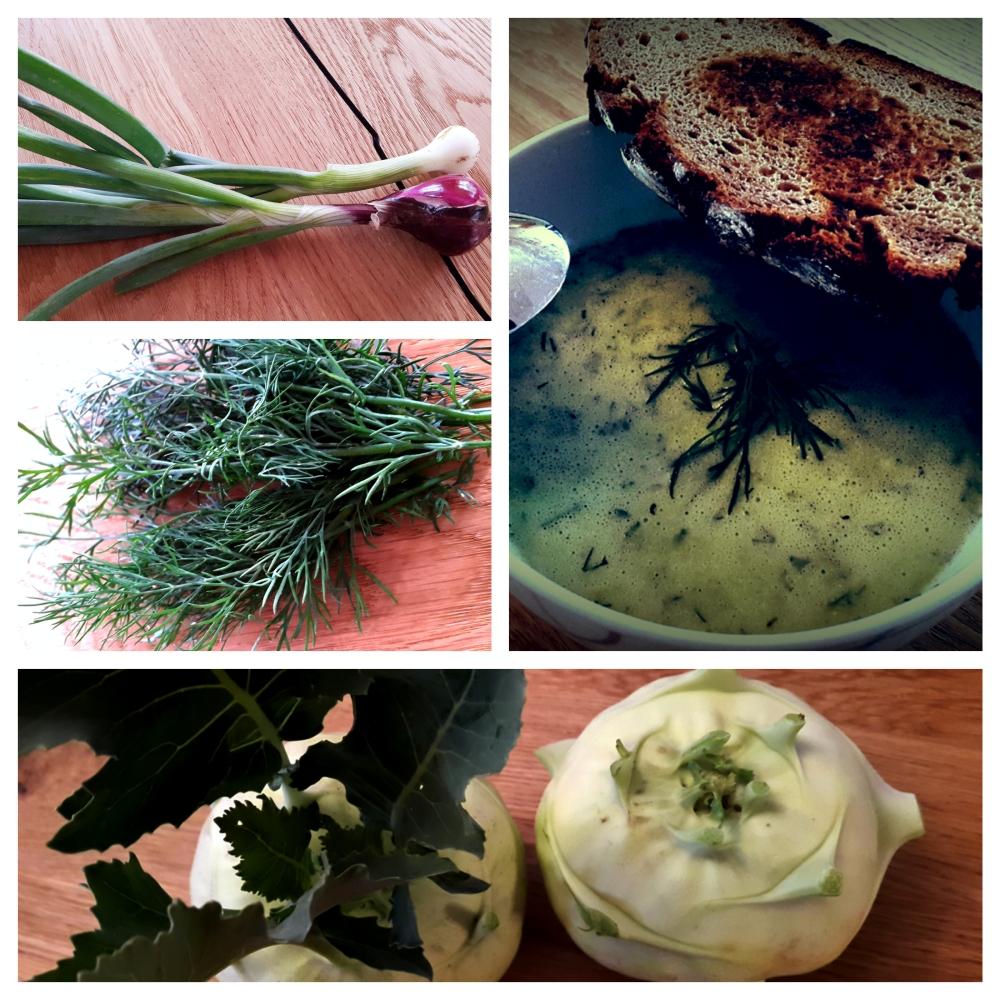 Kohlrabicremesuppe mit Dille und Jungwzwiebel