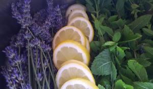 Zutaten Lavendel Minze Sirup